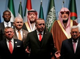 egypt-saudi-arabia-pressured-abbas-jordanian-king-skip-istanbul-summit-report